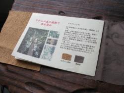 12IMG_3912 - コピー