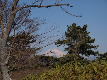 振り向くと富士山