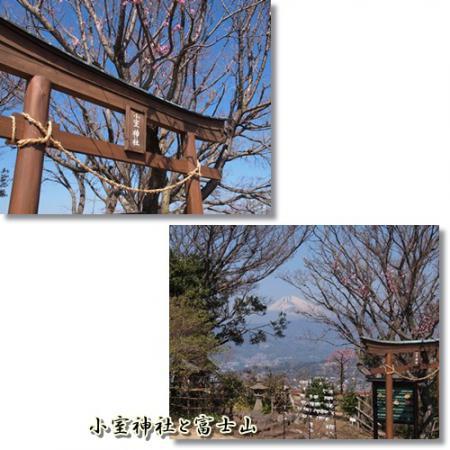 小室神社と富士山