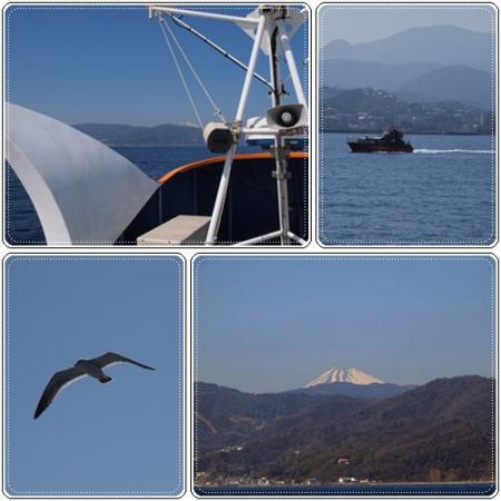 富士山見えた♪