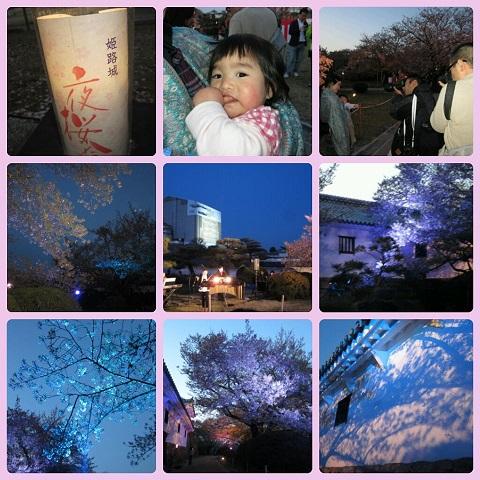 平成25年4月13日姫路城夜桜会2