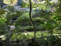深大寺自然広場