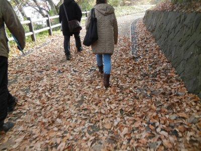 深大寺城に上る坂