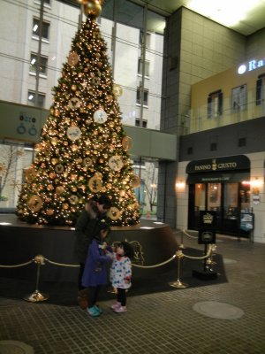 OAZOのクリスマスツリー