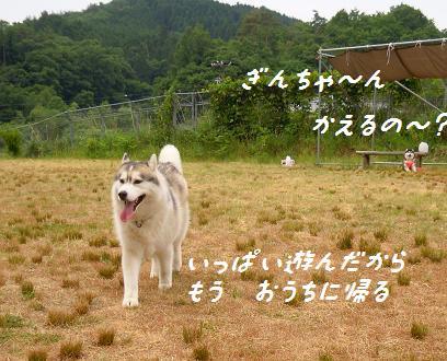 DSCN7621yo.jpg