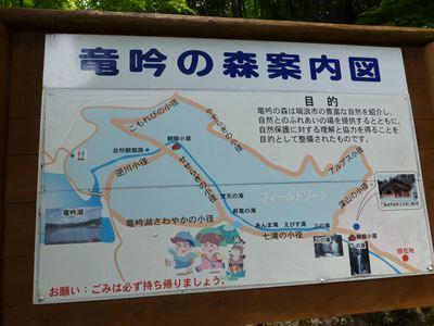 森の案内図