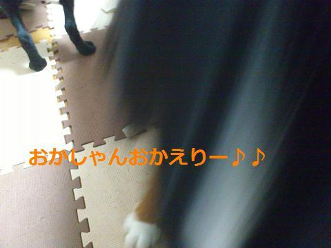 201309271.jpg