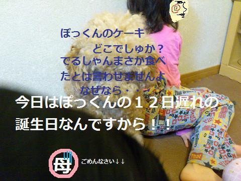 2013112015.jpg