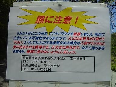 0011092.jpg