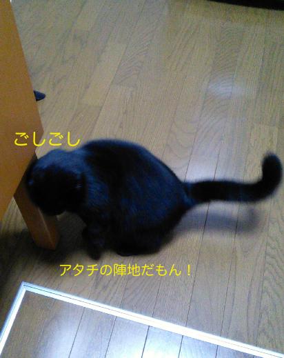 IMG_20140130_032738.jpg
