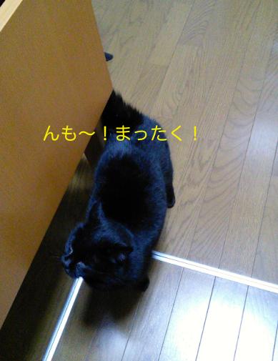 IMG_20140130_032741.jpg