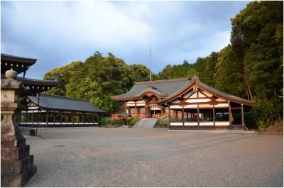 奈良木津川250503_70