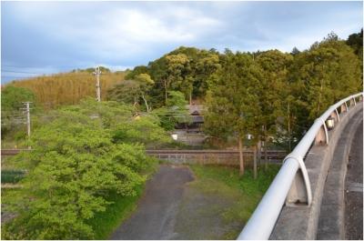 奈良木津川250503_71