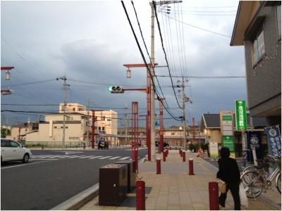 奈良木津川250503_86