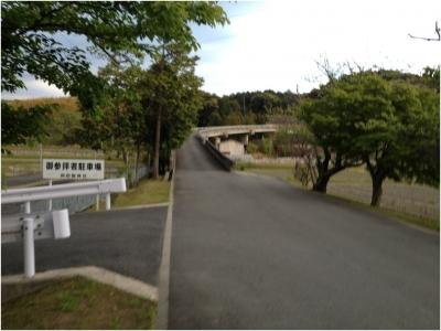 奈良木津川250503_74