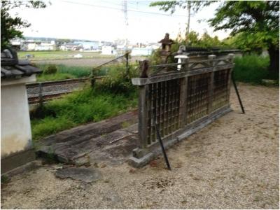 奈良木津川250503_82
