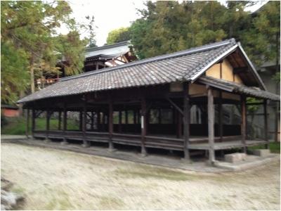 奈良木津川250503_83