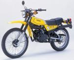 Yamaha20DT125R2080_20130706192646.jpg