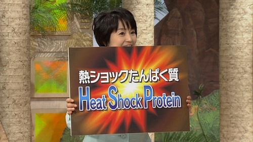 熱ショックタンパク