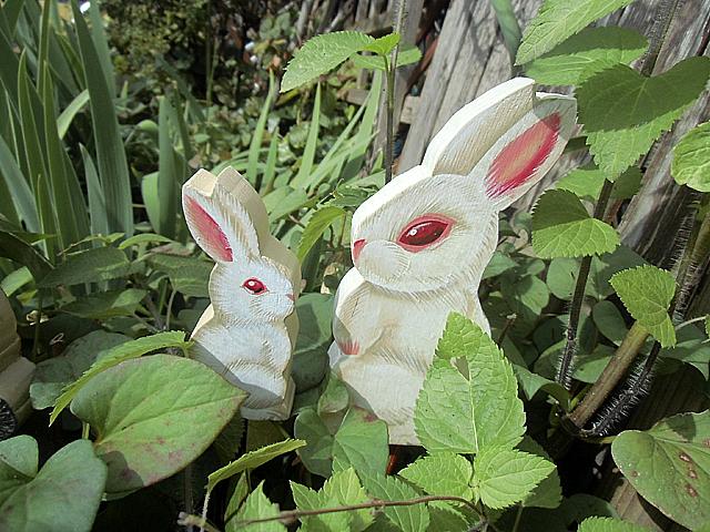 10-白ウサギの親子