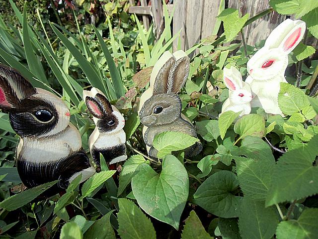 12-ウサギの世界