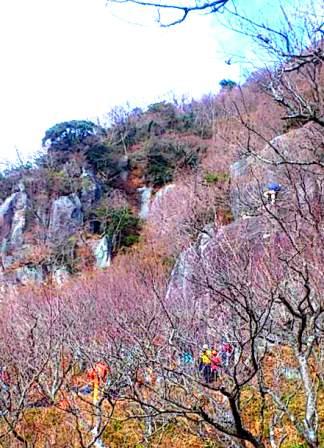 幕山 岩登り