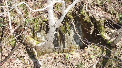 玉川鉱山 (6)穴