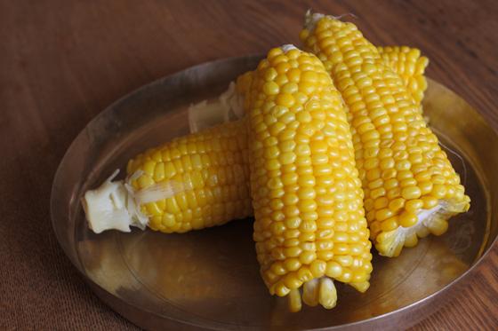 corn081601.jpg
