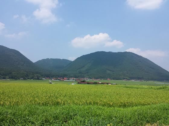tokusa081001.jpg