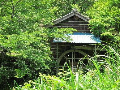 2013_0608滝ノ谷へ0016