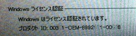 P1003632.jpg