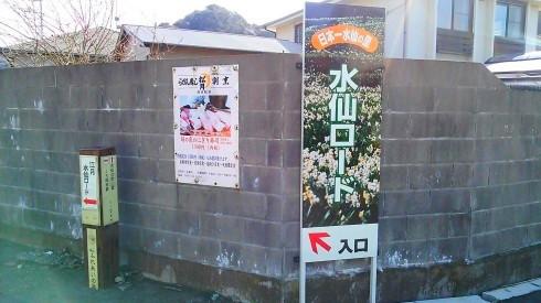 H26.水仙ロード1-10