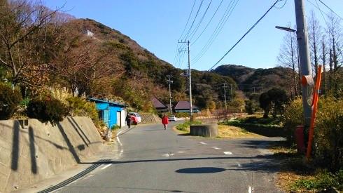 H26.水仙ロード1-12