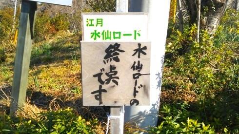 H26.水仙ロード2-14
