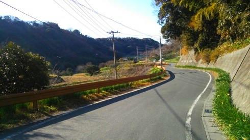 H26.水仙ロード2-24