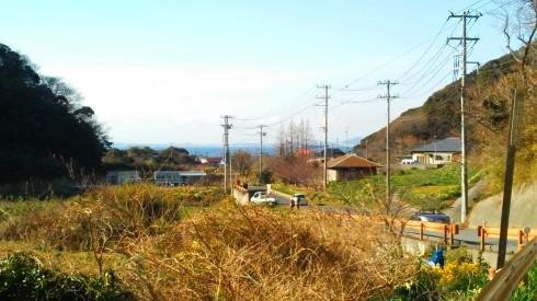H26.水仙ロード2-26