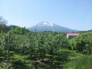 2013-06-10 岩木山①