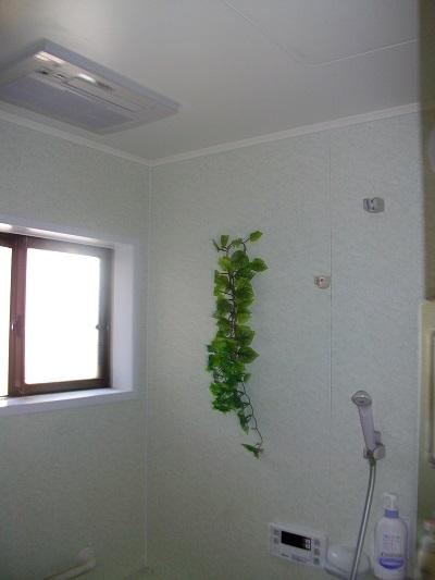 浴乾取替後 天井2