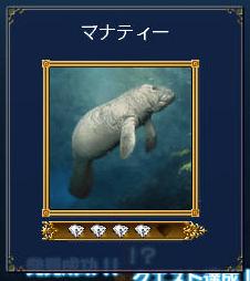 カリブ海の人魚