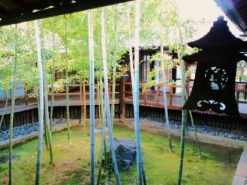 5角形の竹庭