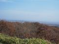 10月の湿原1