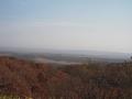 10月の湿原2