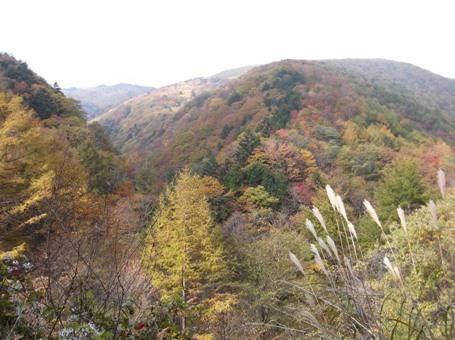 恵那山2013,11,2 003