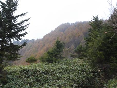恵那山2013,11,2 006