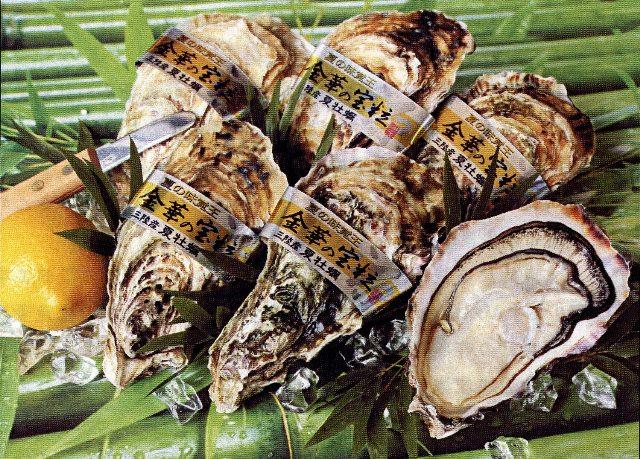 img050 丸源水産 牡蠣送付案内 W