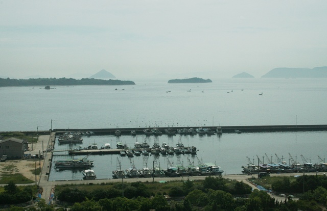 IMG_6733 漁港 W