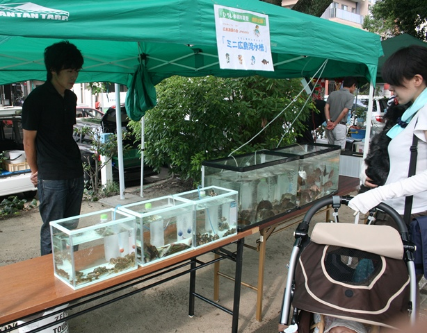 IMG_6987 朝市 ミニ水族館 W