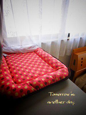 ふうたベッド 1