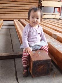 $コアー建築工房 和田のブログ-森林ツアー