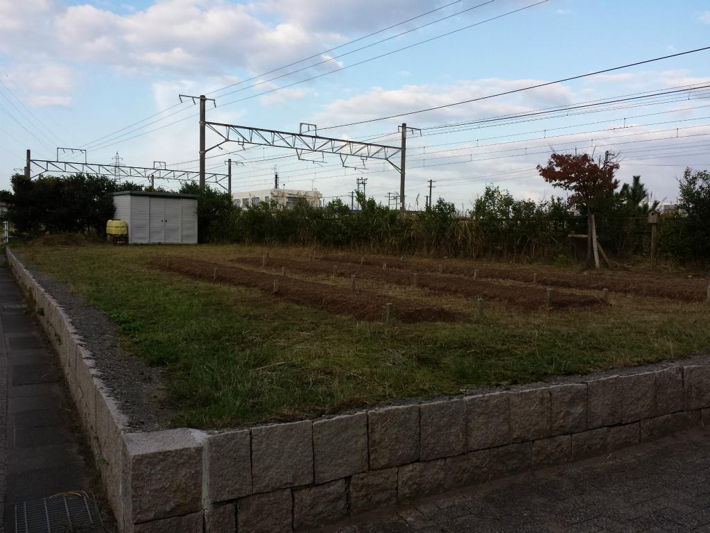 20131101_073046.jpg